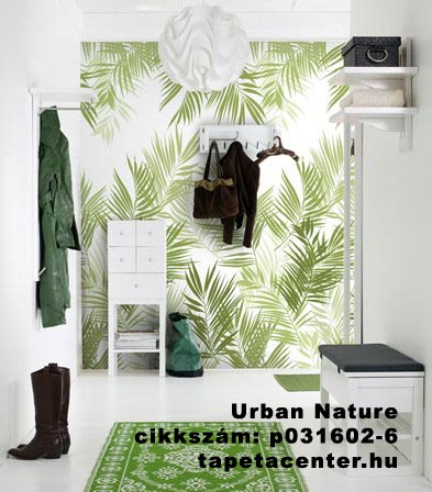 Explore Palm Leaf Wallpaper Nature And More