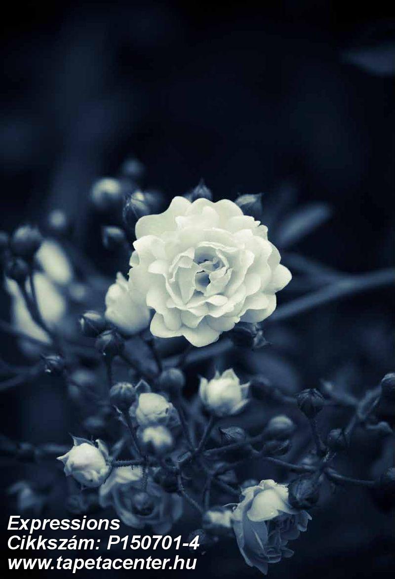 3d hatású,fotórealisztikus,természeti mintás,virágmintás,fehér,fekete,kék,gyengén mosható,vlies poszter, fotótapéta
