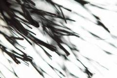 3d hatású,fotórealisztikus,természeti mintás,fehér,fekete,gyengén mosható,vlies poszter, fotótapéta