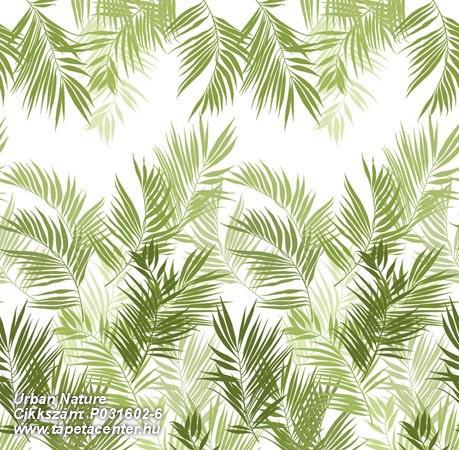 Természeti mintás,fehér,zöld,gyengén mosható,vlies poszter, fotótapéta Természeti mintás,zöld,gyengén mosható,vlies poszter, fotótapéta Virágmintás,természeti mintás,fehér,piros-bordó,narancs-terrakotta,sárga,zöld,vajszínű,gyengén mosható,vlies poszter, fotótapéta Virágmintás,természeti mintás,fehér,piros-bordó,narancs-terrakotta,sárga,zöld,vajszínű,gyengén mosható,vlies poszter, fotótapéta Virágmintás,fehér,kék,türkiz,lila,piros-bordó,narancs-terrakotta,sárga,zöld,gyengén mosható,vlies poszter, fotótapéta Virágmintás,fehér,kék,türkiz,piros-bordó,barna,sárga,zöld,gyengén mosható,vlies poszter, fotótapéta Természeti mintás,rajzolt,fehér,fekete,kék,türkiz,lila,piros-bordó,narancs-terrakotta,sárga,zöld,gyengén mosható,vlies poszter, fotótapéta Virágmintás,fehér,türkiz,piros-bordó,barna,sárga,zöld,gyengén mosható,vlies poszter, fotótapéta Virágmintás,türkiz,piros-bordó,barna,bézs-drapp,sárga,zöld,gyengén mosható,vlies poszter, fotótapéta Virágmintás,fehér,türkiz,piros-bordó,sárga,zöld,gyengén mosható,vlies poszter, fotótapéta Virágmintás,fehér,piros-bordó,sárga,zöld,gyengén mosható,vlies poszter, fotótapéta Virágmintás,kék,piros-bordó,sárga,zöld,gyengén mosható,vlies poszter, fotótapéta Természeti mintás,fehér,kék,zöld,gyengén mosható,vlies poszter, fotótapéta Csíkos,különleges motívumos,fehér,szürke,kék,lila,piros-bordó,pink-rózsaszín,barna,narancs-terrakotta,sárga,zöld,vajszínű,gyengén mosható,vlies poszter, fotótapéta Csíkos,különleges motívumos,szürke,kék,lila,piros-bordó,pink-rózsaszín,barna,bézs-drapp,narancs-terrakotta,sárga,zöld,vajszínű,gyengén mosható,vlies poszter, fotótapéta Csíkos,különleges motívumos,szürke,kék,lila,piros-bordó,pink-rózsaszín,barna,bézs-drapp,narancs-terrakotta,sárga,zöld,vajszínű,gyengén mosható,vlies poszter, fotótapéta Virágmintás,természeti mintás,fehér,pink-rózsaszín,zöld,gyengén mosható,vlies poszter, fotótapéta Absztrakt,fehér,pink-rózsaszín,zöld,gyengén mosható,vlies poszter, fotótapéta Fotórealisztikus,kék,zöld,gyengén mosható,vli